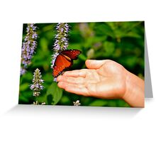 Butterfly and the Boy III Greeting Card