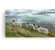 Early morning mists and sheep on Longside edge, near Skiddaw Canvas Print
