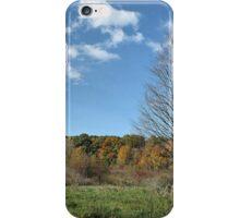 Reservoir Color iPhone Case/Skin