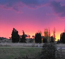 pure sunset  by Rebekah Kilpatrick