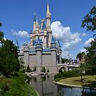 Magic Kingdom, Orlando by Brian Schmutte