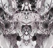 Diaphanous symmetry by crystalline