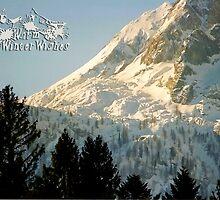 Mountain Christmas 2 ~ Austria ~ Europe by Sabine Jacobs