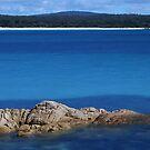 Picnic Beach by Adam  Davey