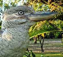Northern Australia Kookaburra  by V1mage