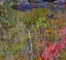 Impressionist Close Up (view larger) by photosbyflood