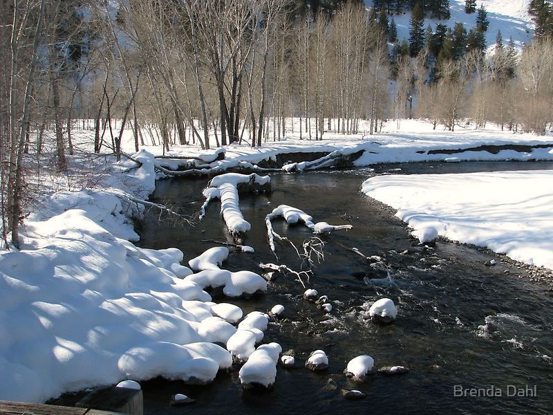 Little Big Wood River, Ketchum, Idaho; USA by Brenda Dahl