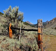Ranching Remnants by Chad M