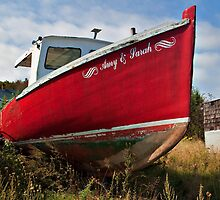 High and Dry by PhotosByHealy