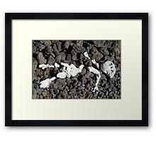 Rock Figure Framed Print