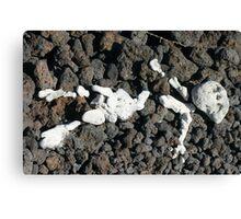 Rock Figure Canvas Print