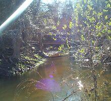 bridge over water by marilittlebird