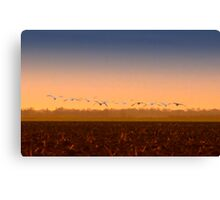 So far away from home Canvas Print