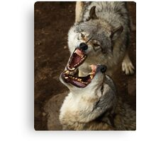 """Smiles, everyone, smiles!"" - Timber Wolves Canvas Print"