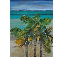 Coconut Bay  Photographic Print