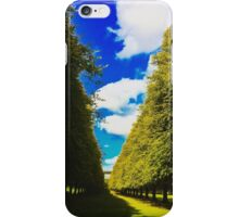 Light through the trees iPhone Case/Skin