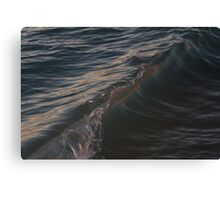 Watery Capture  Canvas Print
