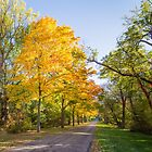 Entrance To Remember - Chelsea, Michigan by Robert Kelch, M.D.