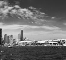 City - Chicago IL -  Chicago Skyline & The Navy Pier BW by Mike  Savad