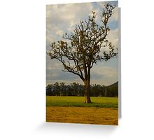 Glen Davis 2011 NSW Australia Greeting Card
