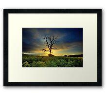 STING Framed Print
