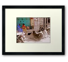 A day in the life... Framed Print