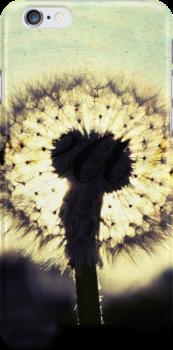 Dandelion Dreams by Claire Elford