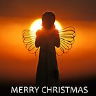 Merry Christmas Angel by David Alexander Elder
