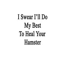 I Swear I'll Do My Best To Heal Your Hamster  by supernova23
