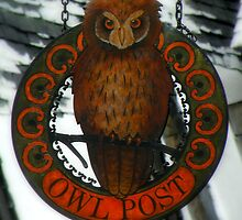 The Owl Post At Hogsmeade by artisandelimage