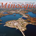Aerial photo of Minocqua Island by tostenson