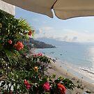 View to the south - Vista al Sur, Puerto Vallarta, Mexico by PtoVallartaMex