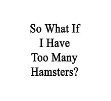 So What If I Have Too Many Hamsters?  by supernova23