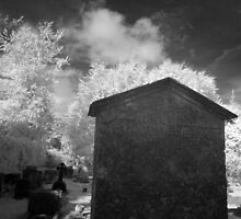 Infrared Photo - Grave Stone by paulaross