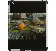 WATER FIGHT iPad Case/Skin