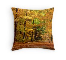 autumn light and colors  Throw Pillow