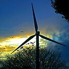 WINDMILL SUNSET by AndyReeve
