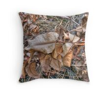 dried leaves Throw Pillow