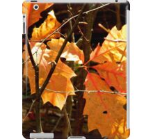 Nature Up Close - 1        ^ iPad Case/Skin