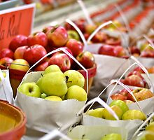 Autumn Apples by Ginadg73