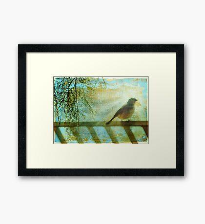 Sing For Me Framed Print