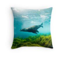 Seal and seagrass, Montague Island, Australia Throw Pillow