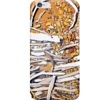 Sticks & Stones for iPhones iPhone Case/Skin