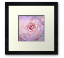 "Begonia (from ""Painted flowers"" collection) Framed Print"