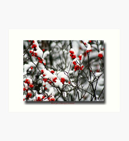 Red berries for Christmas Art Print