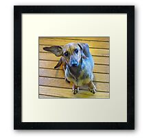 Going My Way? Framed Print