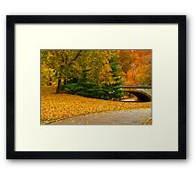 Fall in Central Park ~ New York City ~ USA Framed Print