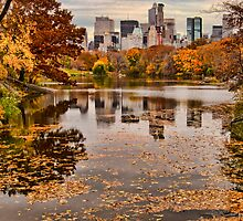 Central Park in the Fall ~ New York City ~ USA by Sabine Jacobs