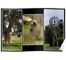 Rural Triptych Poster