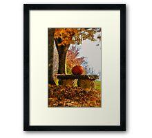 The Last Pumpkin Framed Print